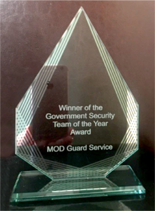 'Team of the Year' trophy at this year's Government Security Awards