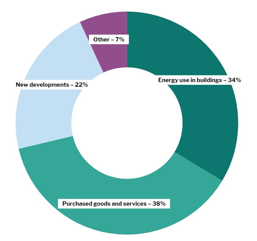 Net Zero infographic