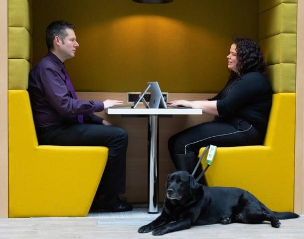 HMRC and guide dog.