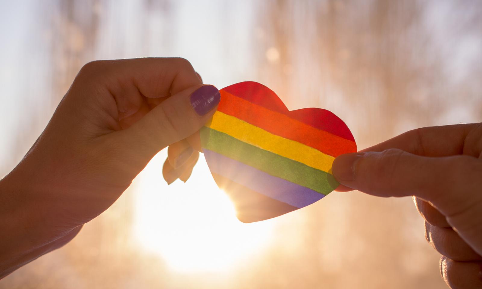 LGBT History
