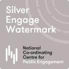 Silver Engagement Watermark award.