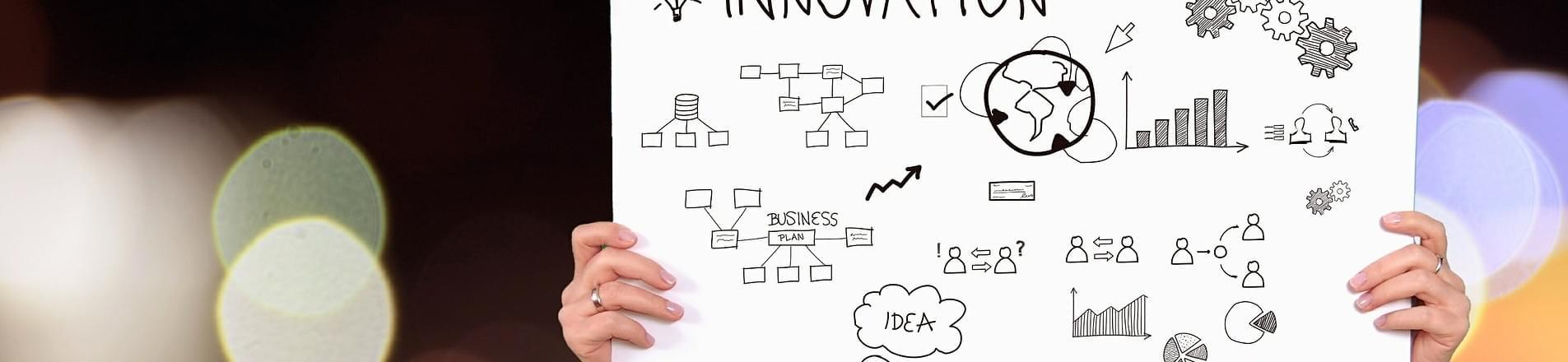 Director Corporate Responsibility | Senior Business Roles