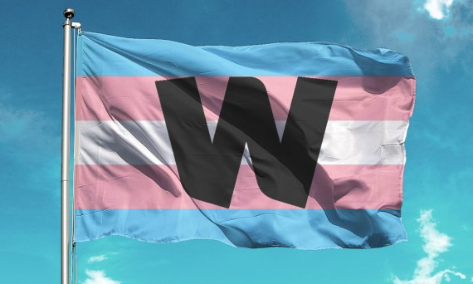 Wellcome trans flag