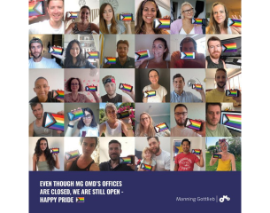 Manning Gottlieb - Virtual Pride 2020 - Participants on a call with flags