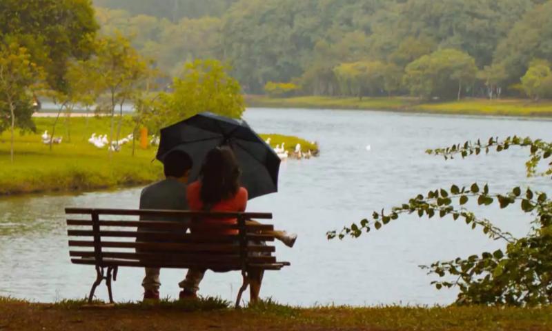 couple sitting on bench near lake