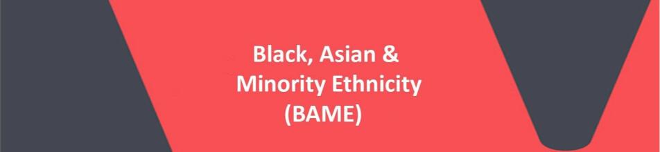 BAME Header Banner