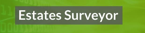 Image of the words Estates surveyor